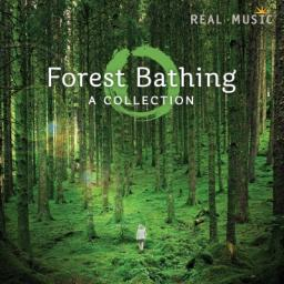 2016 VA - Forest Bathing {Real Music} [WEB]