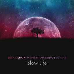 2018 Meditation Mantras Guru - Relaxation Meditation Songs Divine_ Slow Life {Serenity Time} [WEB]