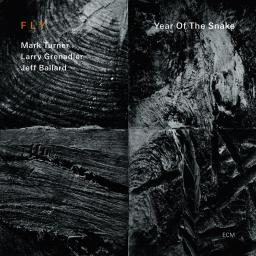 2012 Fly - Year Of The Snake {ECM 2235} [WEB]
