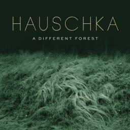 2019 Hauschka - A Different Forest {Sony Classical} [WEB]