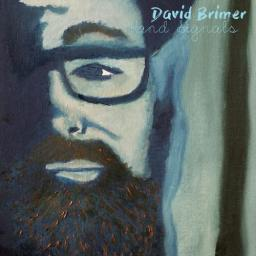 2018 David Brimer - Hand Signals [MP3, 320 kbps]